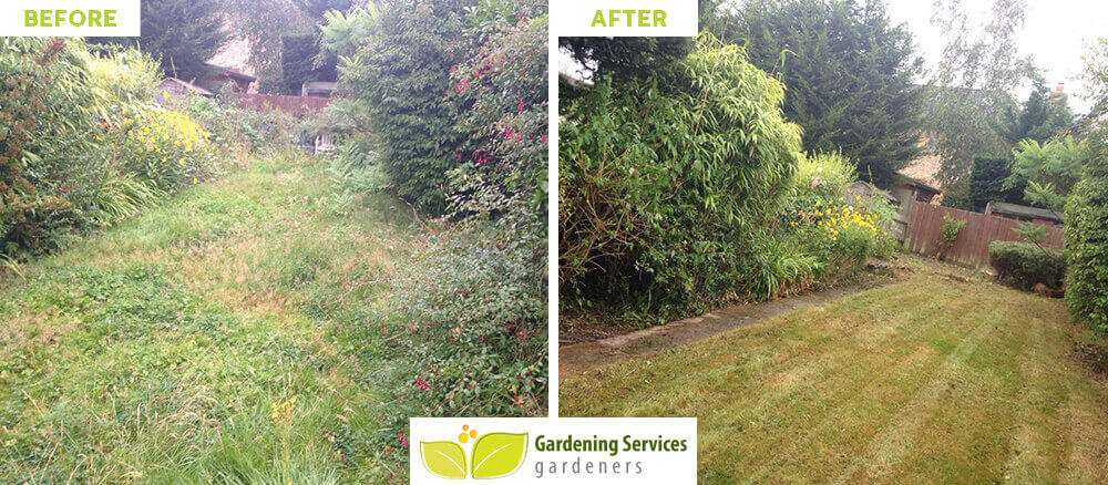Chertsey garden cleaning services KT16