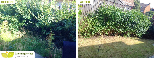 Bethnal Green garden clean up E2