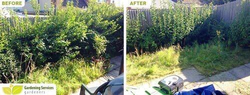 Harringay garden clean up N4