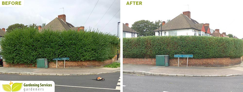Camden garden clean up NW1