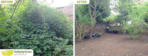 NW8 garden edging St John's Wood