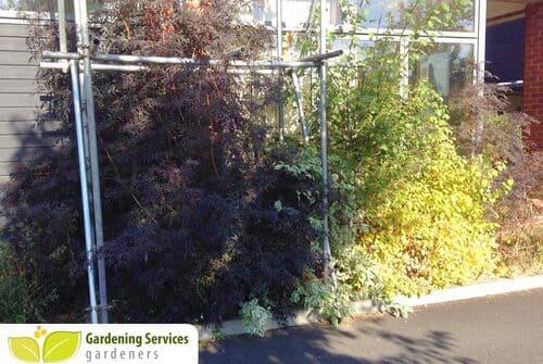 SE18 garden edging Woolwich