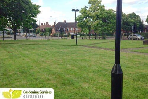 SW16 garden edging Norbury