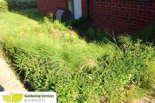 SW6 garden edging Parsons Green