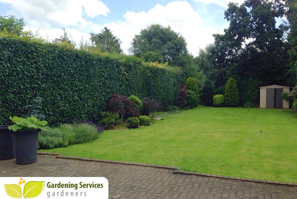 Richmond upon Thames design a garden