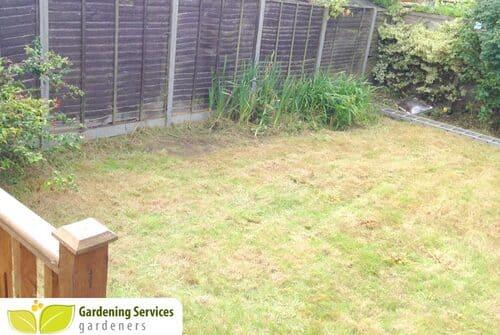 Hammersmith garden clean up W12