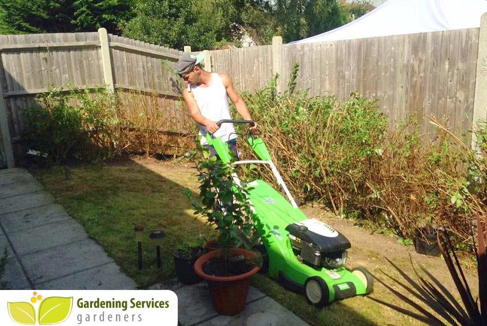 North Kensington landscaping company W12