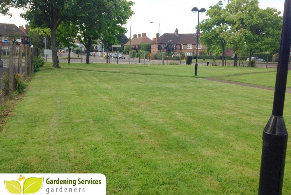 low maintenance landscaping TW15