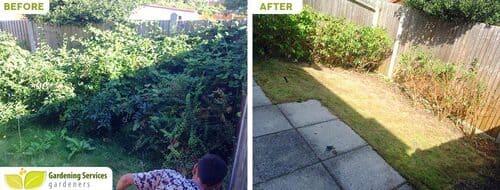 low maintenance landscaping SW1