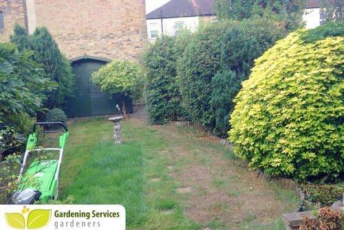 low maintenance landscaping SE1
