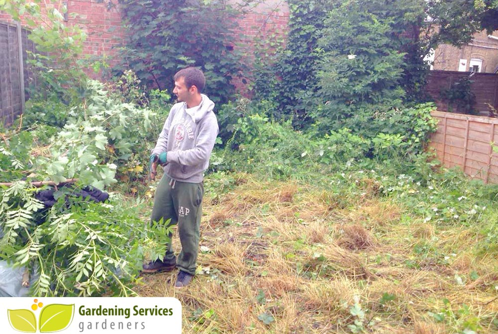 low maintenance landscaping SE16