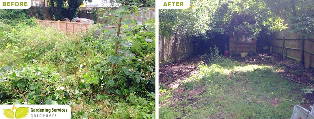 South Croydon garden clearance CR2