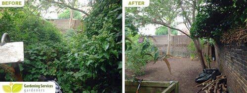 South Kensington gardening uk