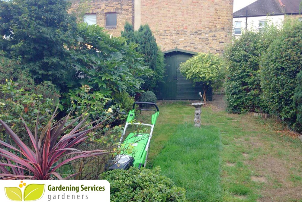 Tulse Hill garden clearance SE24
