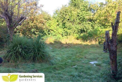 Kingston landscape and garden design KT1