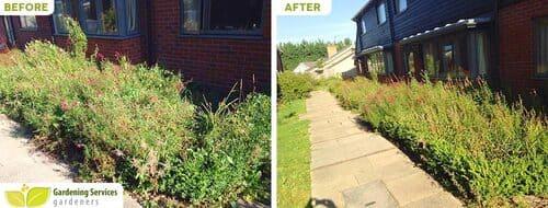 low maintenance landscaping SE12