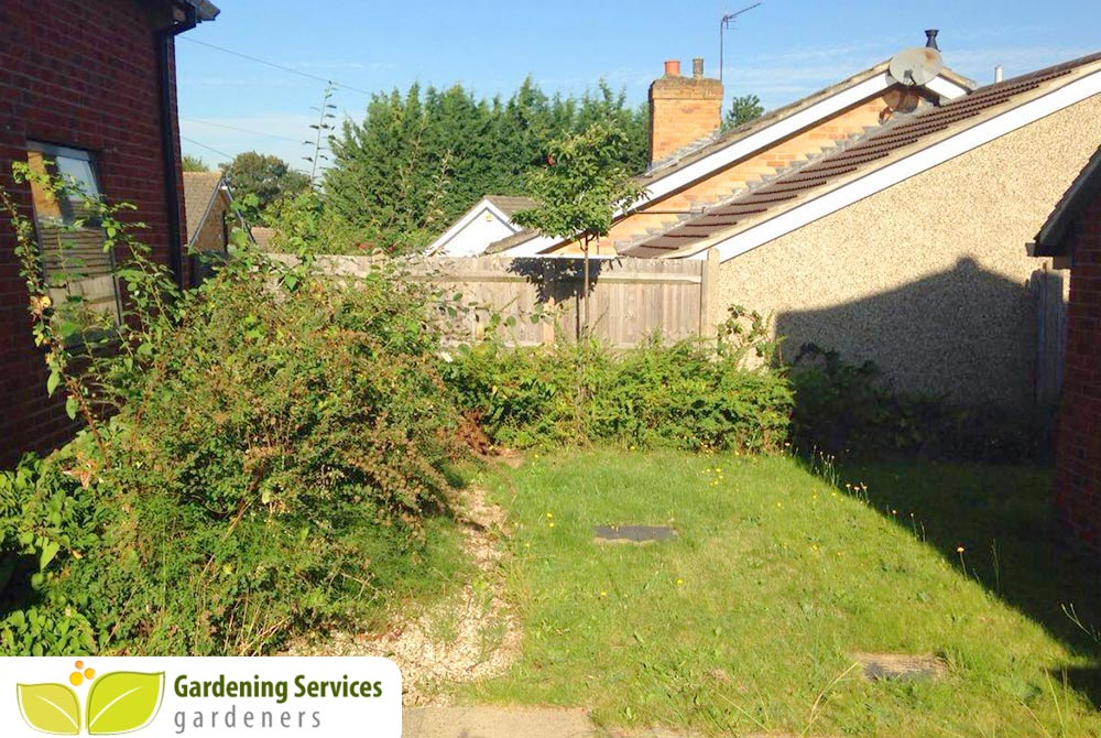 low maintenance landscaping SW1