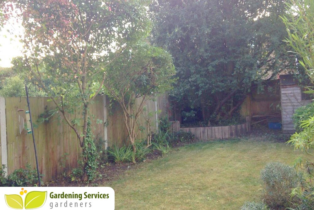 low maintenance landscaping SW20