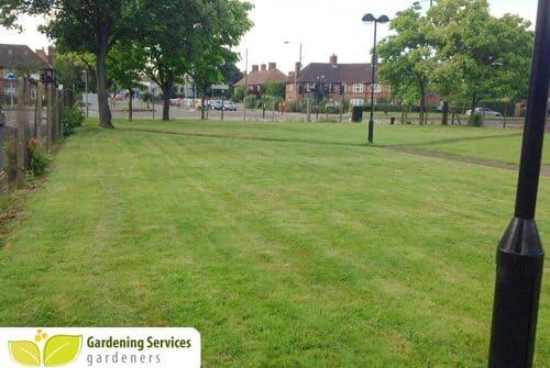 low maintenance landscaping EC3