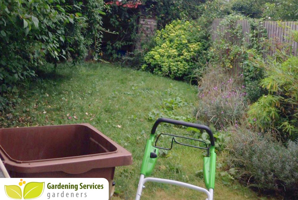 low maintenance landscaping SW8