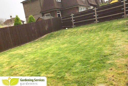 low maintenance landscaping KT8